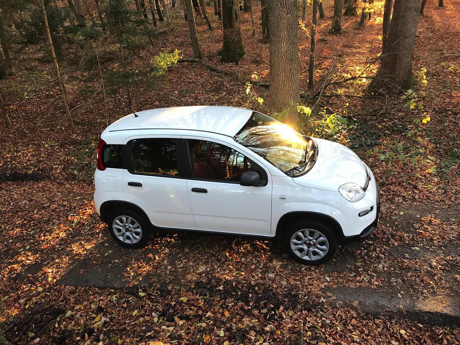 Fiat Panda 312 Allrad