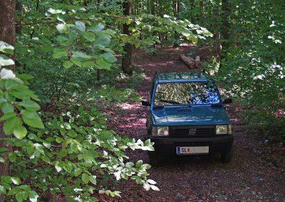 Prossinger Werbeagentur fotografiert: Fotostrecke Fiat Panda »Waldbär«